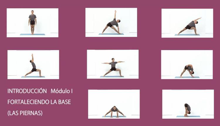 curso-de-yoga-iyengar-modulo-I