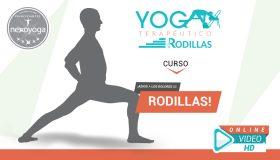 Curso de Yoga Terapéutico para RODILLAS