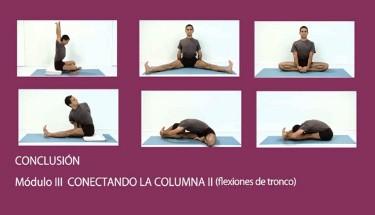curso de yoga  yoga en casa  clases yoga  videos yoga
