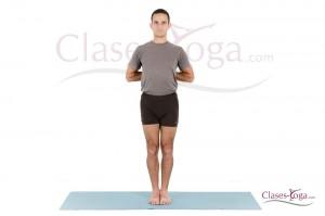 paschima namaskarasana  clases yoga