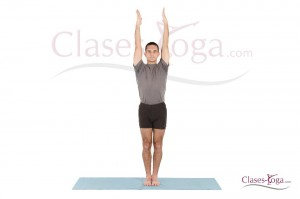 urdhva hastasana  clases yoga